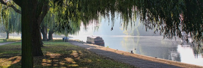 Barge and willows